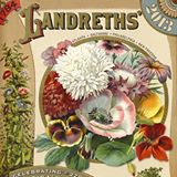 Landreth's2013catalogcover